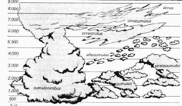 vue schématique des différents nuages de l'atmosphère terrestre.